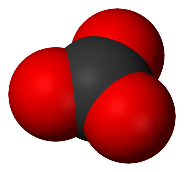 ファイル:Carbonate-3D-vdW.png