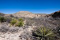 Carlsbad Caverns National Park and White's City, New Mexico, USA - 48344865541.jpg