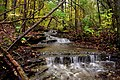 Cascading Towards Woods Fork - panoramio.jpg