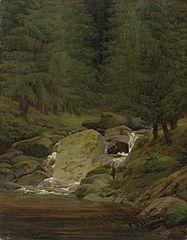 forêt de sapins avec cascade
