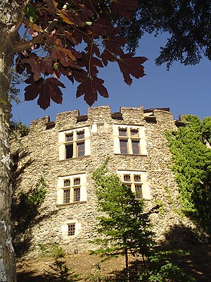 Introd - Introd Castle