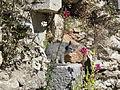 Cat in the ruins of the Greek Theatre built in 200 BC, Lychnidos, Ohrid, Republic of Macedonia FYROM (8398209378).jpg