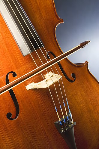 Double stop - Cello bridge holds strings over the finger and sounding boards.