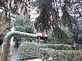 Cerak vinogradi (18.11.2018), ulica Kedrova 03.jpg