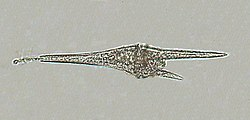 Ceratium furca.jpg
