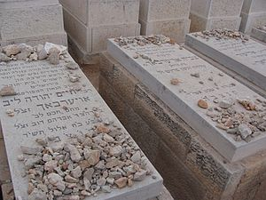 Chaim Yehuda Leib Auerbach - Graves of Chaim Yehuda Leib Auerbach (left), his wife Tzivia (center), and son Eliezer (right) at Har HaMenuchot.