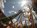 Cheetah Hunt exiting figure 8.jpg