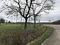 Chemenot (Jura, France) - 1.JPG