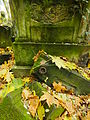 Chenstochov ------- Jewish Cemetery of Czestochowa ------- 191.JPG