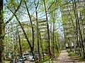 Chertanovo Severnoye District, Moscow, Russia - panoramio (22).jpg
