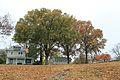 Chesapeake Avenue, Hampton, VA (8267290256).jpg
