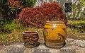 Chinese stenen potten voor Japanse esdoorn (Acer palmatum). Locatie, Chinese tuin Het Verborgen Rijk van Ming in de Hortus Haren 01.jpg