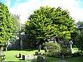 Church of St Philleigh, Philleigh - geograph.org.uk - 1474841.jpg