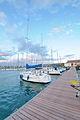 Circolo Nautico NIC Porto di Catania - Sicilia Italy Italia - Creative Commons by gnuckx (5436599113).jpg