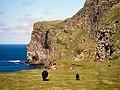 Cliffs, Foula.jpg