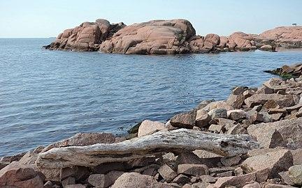 Cliffs and driftwood at Stångehuvud - b.jpg