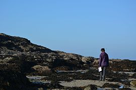 Coast of Dinard 01.JPG