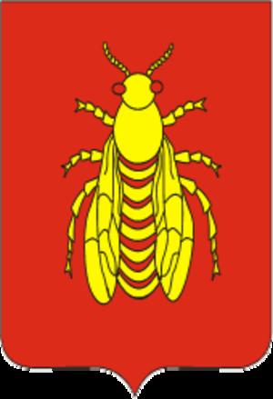 Vidzy - Image: Coat of Arms of Vidzy