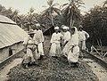 Collectie Nationaal Museum van Wereldculturen TM-60062008 Cacao bonen worden met blote voeten bewerkt Trinidad fotograaf niet bekend.jpg