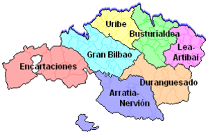 Greater Bilbao - Greater Bilbao (in blue) within Biscay.