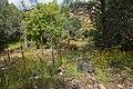 Continental Divide Trail - Flickr - aspidoscelis (38).jpg