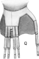 CorsetStyles1909-1910p10Q.png