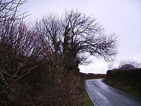 Country Road - geograph.org.uk - 135080.jpg