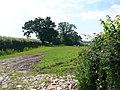Countryside near Springfield farm - geograph.org.uk - 841224.jpg