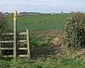Countryside north of Wymondham, Leicestershire - geograph.org.uk - 784366.jpg
