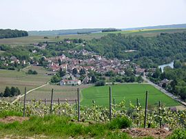 A general view of Crouttes-sur-Marne