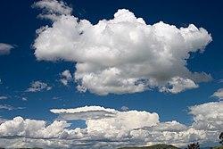 Cumulus cloud.jpg