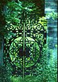 Czarodziejski ogród.jpg