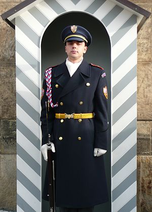 Czech Guard soldier