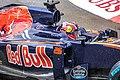 Daniil Kvyat - 2016 Monaco GP.jpg