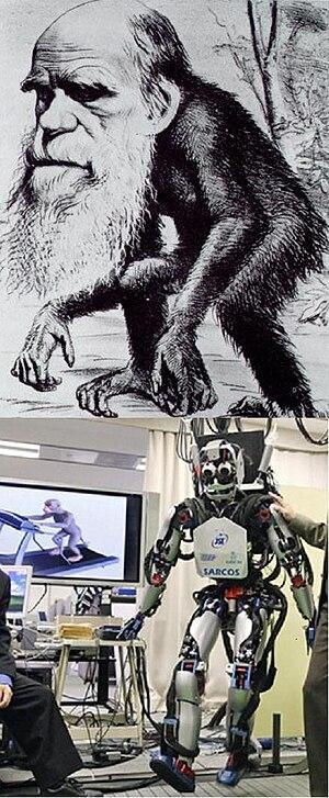 English: Darwin head running ape body, monkey ...