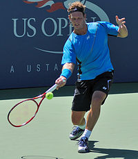 David Nalbandian at the 2010 US Open 01.jpg
