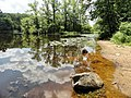 Davidson Mill Pond Park, South Brunswick, New Jersey USA July 15th, 2013 - panoramio (3).jpg