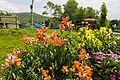 Davis falls garden 2609.jpg
