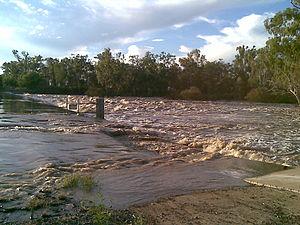 Dawson River (Queensland) - Image: Dawson River near Moura
