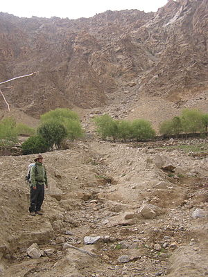 Debris flow - Another debris flow in Ladakh, triggered by storms in 2010. Note poor sorting and levees. Steep source catchment is visible in background.
