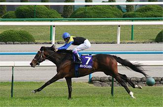 Deep Impact (horse) - Tenno Sho 2006 on April 30