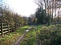 Diamond Way - geograph.org.uk - 1597871.jpg