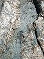 Dike intruding tillite (Nipissing Diabase & Gowganda Formation, Paleoproterozoic; Percival Lake roadcut, Ontario, Canada) 38 (47728866801).jpg