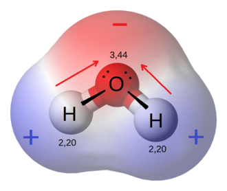 Chemical polarity - The water molecule is made up of oxygen and hydrogen, with respective electronegativities of 3.44 and 2.20. The dipoles from each of the two bonds (red arrows) add together to make the overall molecule polar.