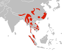 Distibution map of Asian Golden Cat.svg