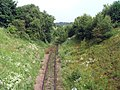 Disused Railway Track near Edwinstow - geograph.org.uk - 463126.jpg