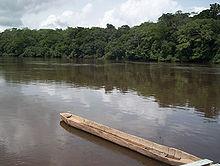 Mokélé-mbembé — Wikipédia
