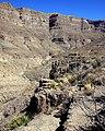 Dog Canyon Cliffs (5508076599).jpg
