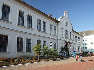 Dolyna - Image: Dolyna Hospital Hrytsey st, 15 4