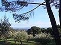 Domaine des Treilles - paysage depuis le pavillon Ammonites.JPG